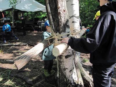 <p><strong>10.</strong> Ağaçları bağlama  teknikleri</p>