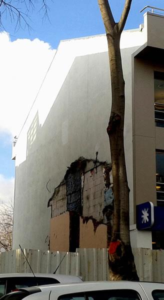 <p><strong>11. </strong>İstanbul'da yerinde  büyüme örnekleri<br />  Kaynak: Yazarın  arşivi</p>