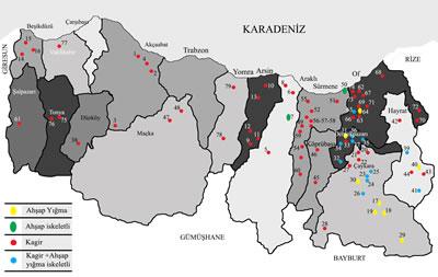 <p><strong> 1. </strong>Trabzon  kırsalındaki camilerden örnekler</p>