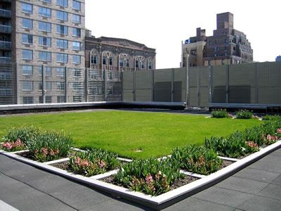 <p><strong>1.</strong> Okul yapısında yeşil çatı  kullanımı (Calhoun School Green Roof Learning Center)<br />(Kaynak:URL1.)</p>