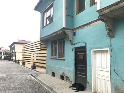 <p><strong>17a.</strong> Sokak dokusunun içinde karşılaşılan OMM<br />   Fotoğraf: Ayşen Savaş</p>