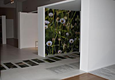 <p><strong>1d.</strong> Son  dönemdeki Etik-Estetik-Tasarım temalı sergilere önde gelen bir örnek olarak  Benaki Müzesi&rsquo;nde Aris Zambikos ve Lina  Stergiou&rsquo;nun düzenlediği Sergi, Atina, 8.06-31.07.2011 <br />Kaynak: www.archello.com/en/project/aao-ethicsaesthetics-exhibition-design-benaki-museum# [Erişim: 17.06.2015]
