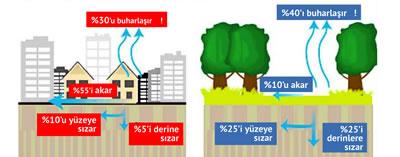 <p>Yağışlar beton ve asfalt kaplı  kentlerde neden su baskınına dönüşüyor?<br />Kaynak: www.350ankara.org