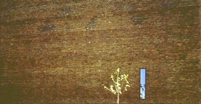 <p><strong>2.</strong> Ziya Tanalının objektifinden Stockholm, 1965</p>