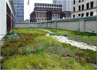 <p><strong>2.</strong> Yeşil çatıdan bir görünüm<br />(Kaynak: Green Roofs- Cooling Los Angeles, 2006,)</p>