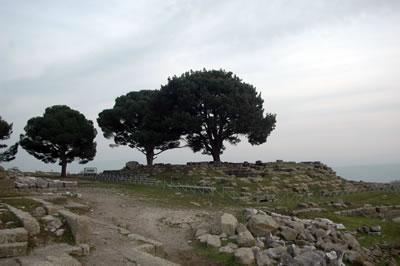 <p><strong>Resim  3.</strong> Zeus  Sunağının özgün yerinin bir numaralı bakı noktasından günümüzdeki görünümü<br />  Fotoğraf: N.  E. Karabağ, Şubat 2016</p>