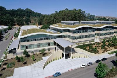 p><strong>4.</strong> Mimar William Mc Donough tarafından Gap Yönetim Binası olarak tasarlanmış olan  binada yeşil çatı uygulanmıştır. San Bruno, Kaliforniya<br />(Kaynak: URL3.)</p>