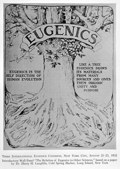 <p><strong>4</strong>.  1921 de düzenlenen II. Uluslararası Öjeni Konferansının logosu<br />Kaynak: upload.wikimedia.org/wikipedia/commons/8/8a/A_decade_of_progress_in_Eugenics._Scientifi_Wellcome_L0032341.jpg?uselang=tr [Erişim: 13.11.2016]