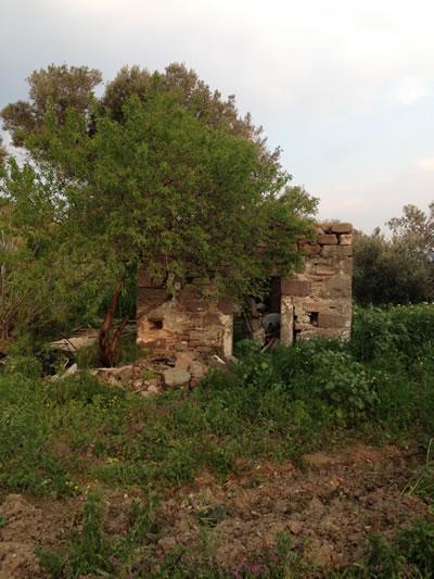 <p><strong>Resim 5(f).</strong> Erythrai ören yeri içinde yıkıntı durumundaki nirengi  yapılar<br />Aziz Nikola Şapeli</p>