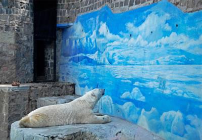 <p><strong>5.</strong> Şilinin başkenti Santiagoda The National Zoo da bulunan kutup ayısı (Taco  olarak isimlendirilmiştir) 2015 yılında 18 yaşındayken ölmüştür.<br /> Kaynak:  https://www.wildculture.com/article/polar-attraction-brief-history-arctic-white-bear-captivity/1624  [Erişim: 15.05.2020]</p>