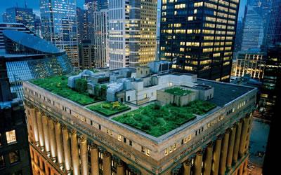 <p><strong>5.</strong> Şikago Belediye Binası <br /> (Kaynak: URL4.)</p>