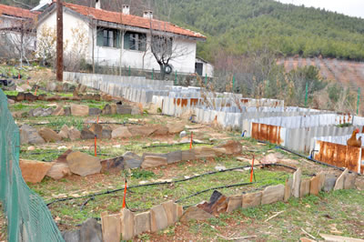 <p><strong>5.</strong> Tarımsal faaliyet alanları<br />  Kaynak: Güleryüz,  2012</p>
