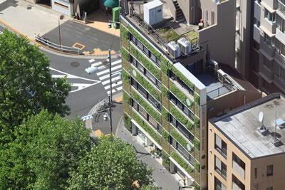 <p><strong>6. </strong>Tokyo Hasegawa Yeşil Binası<br />  Fotoğraf: Meltem Şenol Balaban</p>