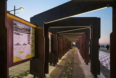 <p><strong>8. </strong>Tırtılın oluşturduğu  koridor<br /> Fotoğraf: Burak Altınışık</p>