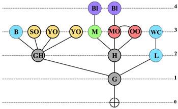 <strong>Örnek  7. </strong>Erişim Grafiği </p>